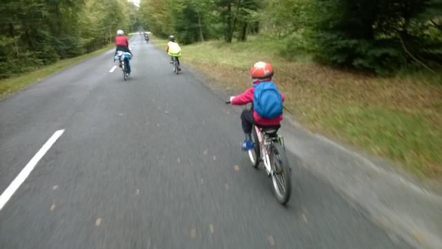 la ronde à vélo, Fontainebleau 12 Octobre 2014 128447WP20141012012