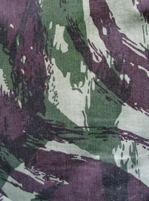Vertical lizard trousers 129525portug2