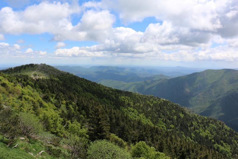 Les Cevennes autour du Mt Aigoual 129614IMG3148