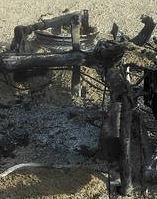 La Winchester de Bouffaleau Grill 131724amasgrill