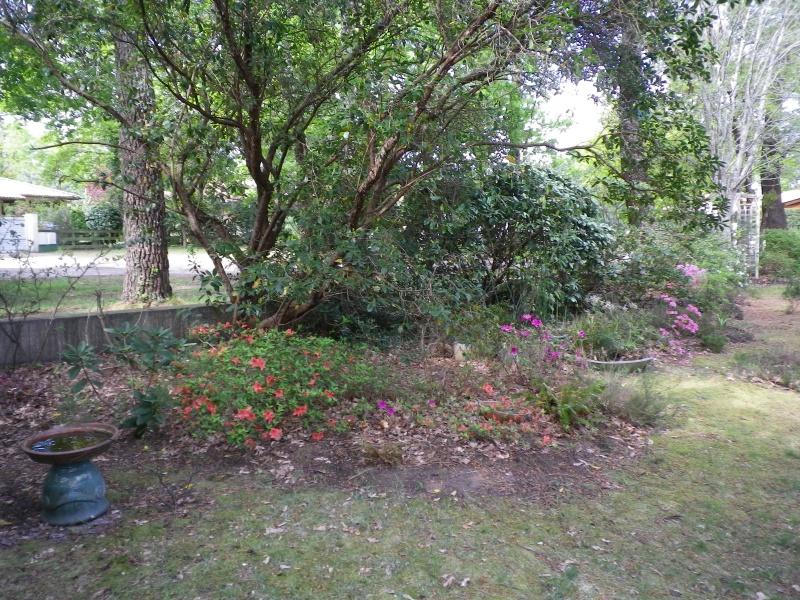 avril, jardin fébrile - Page 5 138822IMGP4327