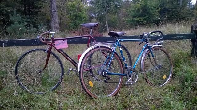 la ronde à vélo, Fontainebleau 12 Octobre 2014 140076WP20141012016