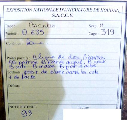 exposition d'aviculture Foire ST MATTHIEU 27 et 28 Septembre 2014 - Page 3 142981P1150640