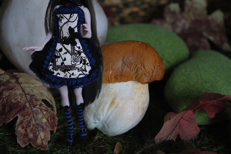 Nymeria (Sixtine Dark Tales Dolls) nouveau make-up p8 150475Alyssiartricie1