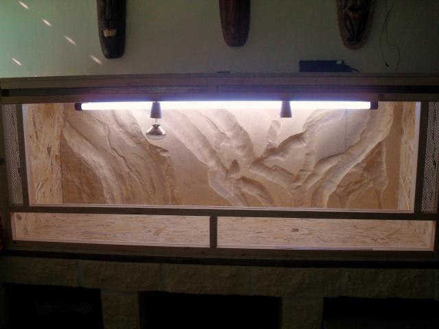 Mon nouveau terrarium 151945SDC11875