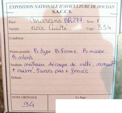 exposition d'aviculture Foire ST MATTHIEU 27 et 28 Septembre 2014 - Page 3 155610P1150679