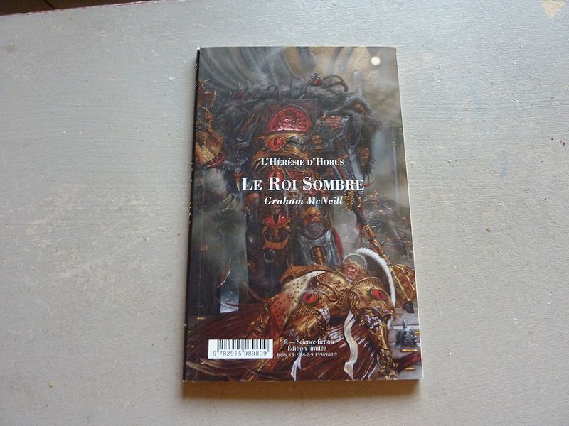 Le Roi Sombre / La Tour Foudroyée (Bibliothèque Interdite) 163522toursombre1
