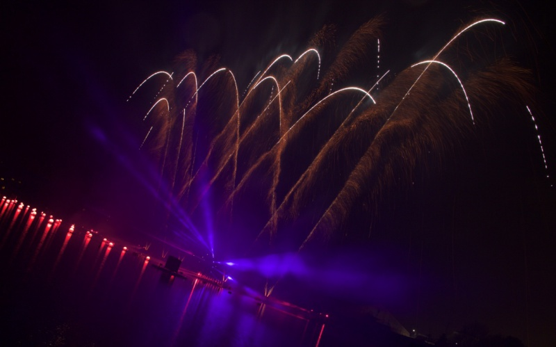 Les Feux Magiques de Disney - Disney's Magical Fireworks & Bonfire (Editions 2008 à 2016) - Page 11 163597thumbIMG57251024