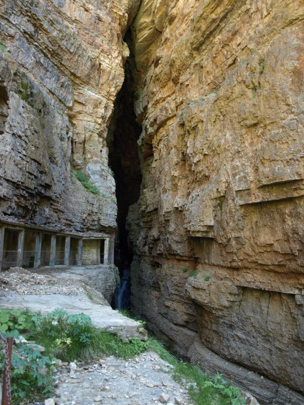 Les Cevennes autour du Mt Aigoual 165012P6238135