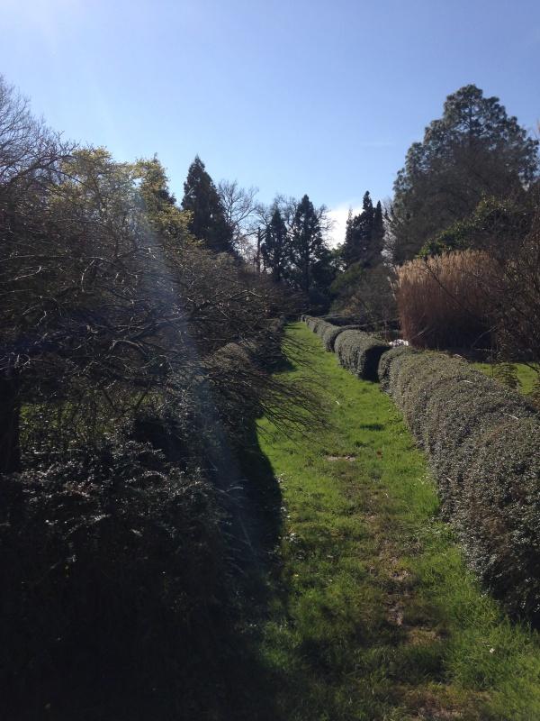 (40) Plantarium et chemin de ronde - Gaujacq 168408IMG0456