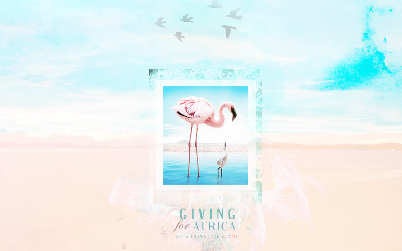 ♣ giving for africa
