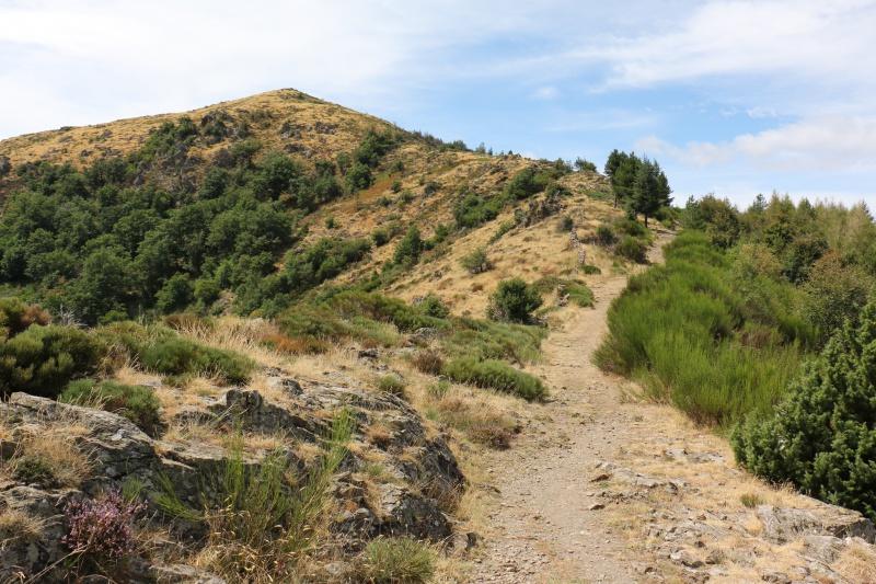 Les Cevennes autour du Mt Aigoual 181216IMG5227