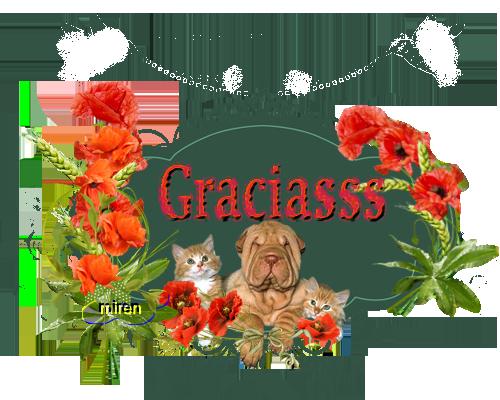 Mis gatitos 189335Gracias