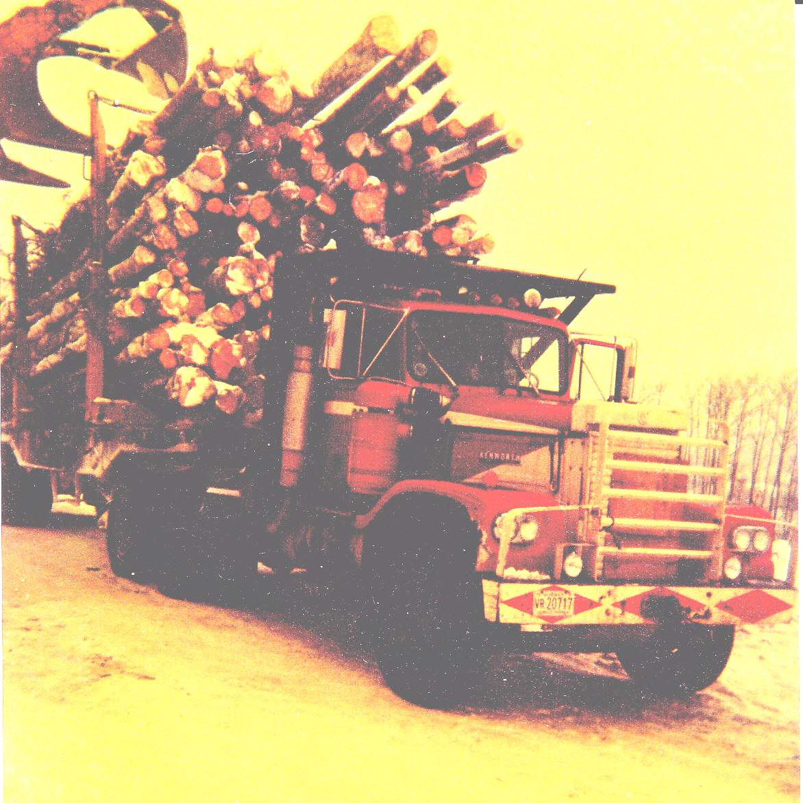 Camion forestier et sa remorque 195673eriedemonpreCopie