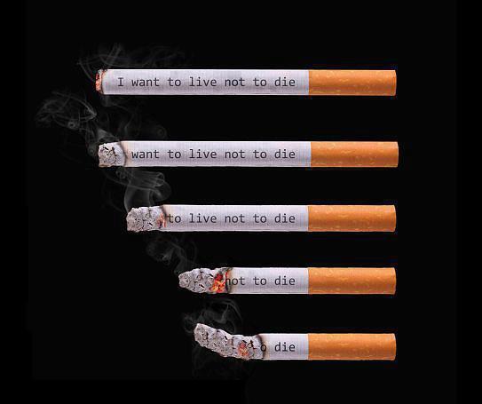 منتدى الاقلاع عن التدخين    forum arrêter de fumer - صفحة 5 19719440272634756486862161513698520301291710776782071608189n