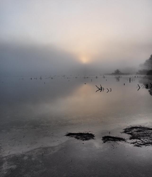 matin sur le lac. 200505PA050042