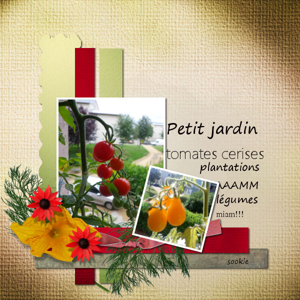 pages avril- mai- juin 2015 203840scrapliftlegume