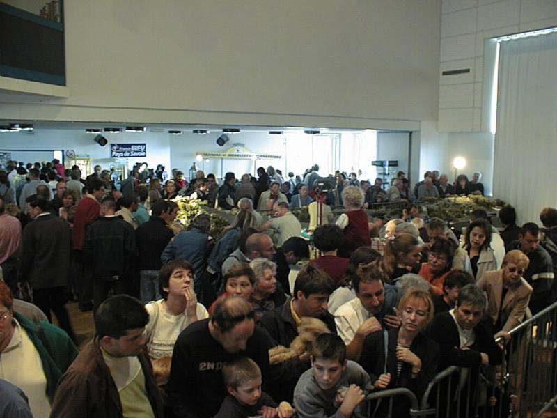 2003 expo viuz salle culturelle 211357PIC00114