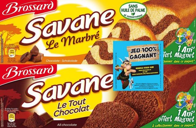 Opération Savane avec AStérix 211646savane