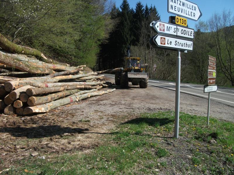 Du débardage dans les Vosges, à Hauteur de Schirmeck 216584010