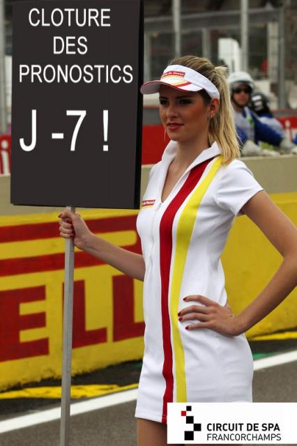 Motorlegend Pronostics Challenge 2016 - Page 2 220570f1braziliangp2013gridgirl