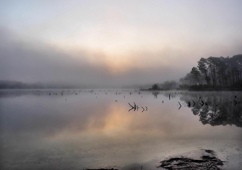 matin sur le lac. 235419PA0500351