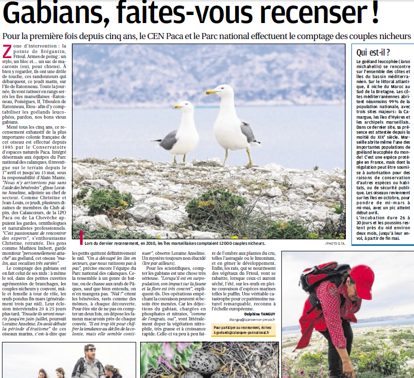 LA FAUNE ANIMALE MEDITERRANEENNE - Page 13 2464525240