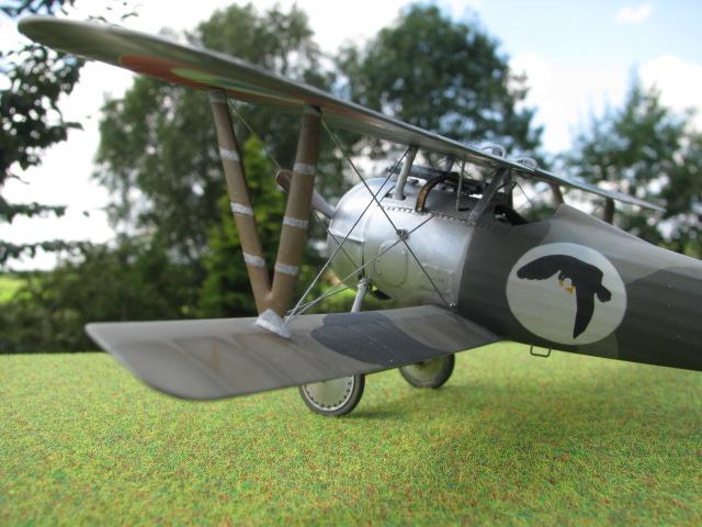 Nieuport 24 Roden 1/32 Modèle terminé. 249343IMG2565