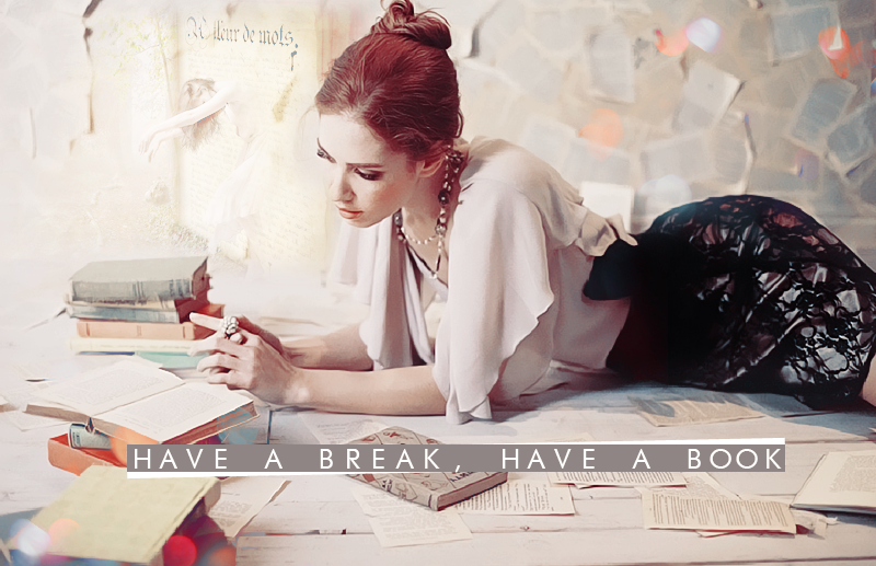 Have a Break, Have a Book