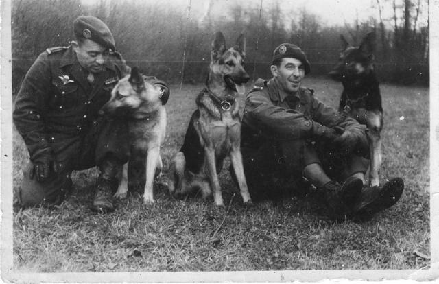 1948/1950 Algérie 2ème Bataillon du 1er R.C.P. 259873gSLtHbertRCP1950