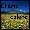 Champ Coloré