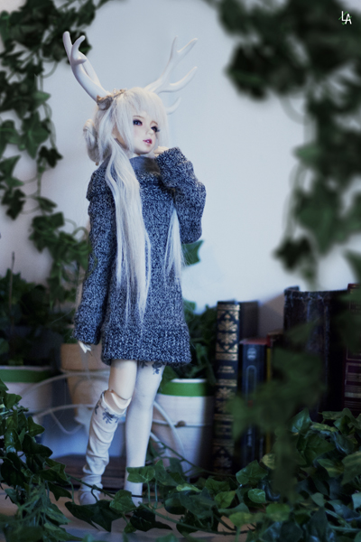 [Mc Carty Family] Rose & Ivy [Dreaming Doll Airi] 261991933