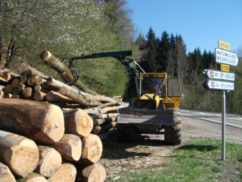 Du débardage dans les Vosges, à Hauteur de Schirmeck 263942009