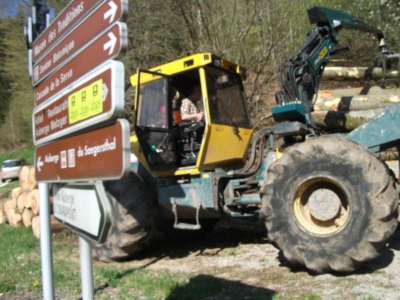 Du débardage dans les Vosges, à Hauteur de Schirmeck 265624017