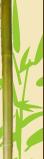 sensei-pub 266625Sanstitre111