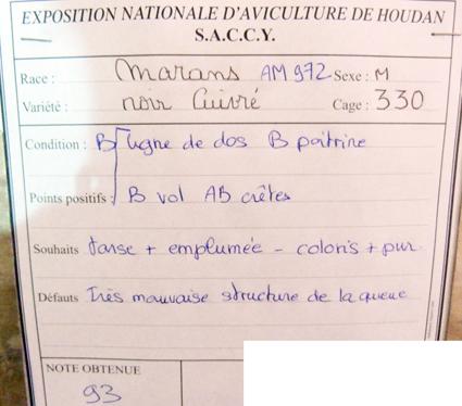 exposition d'aviculture Foire ST MATTHIEU 27 et 28 Septembre 2014 - Page 3 273307P1150669