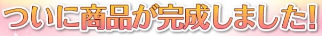 (Japan) Disney Fantasy Shop : articles de maison divers 283686dfs14