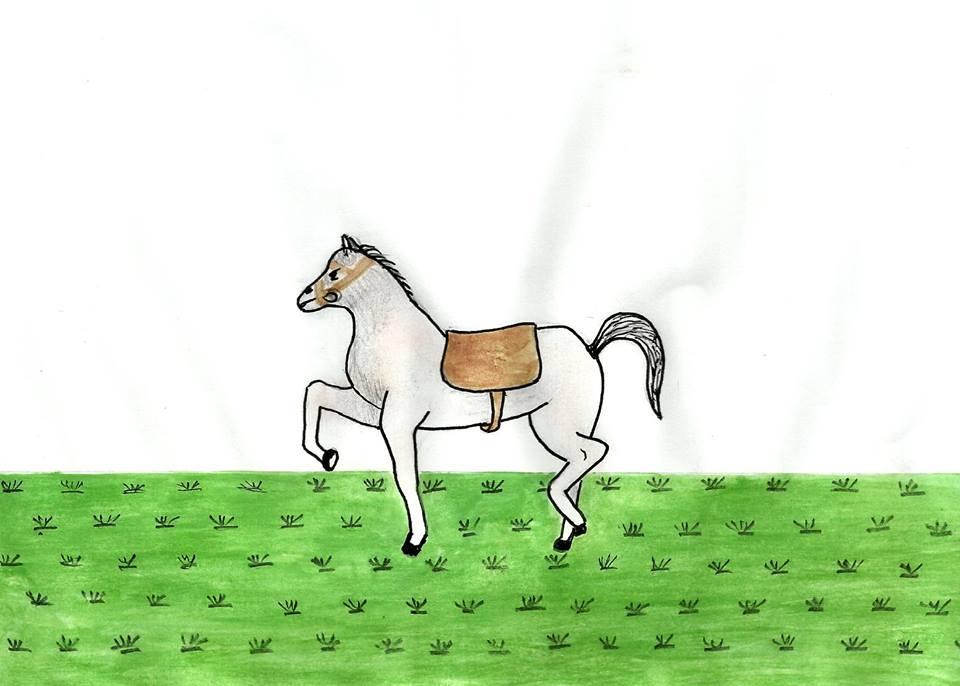الحصان والسوط / محمد ابراهيم بوعلو 2894071175525816150210520489194675217764493988014n