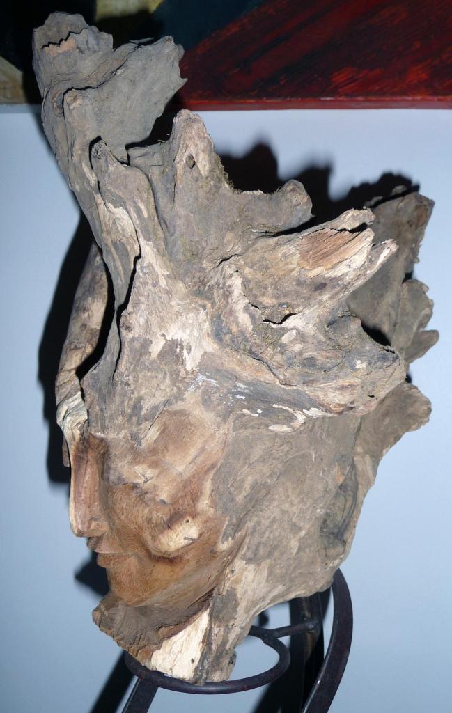 Aide traitement racine arbre 'platane) 291220P1080692