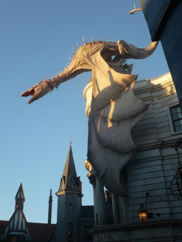 [18-31 octobre 2014] Voyage de noces à Walt Disney World et à Universal - Page 22 309391P1090995