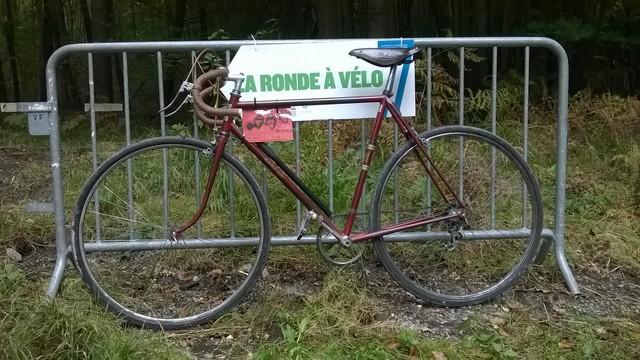 la ronde à vélo, Fontainebleau 12 Octobre 2014 311509WP20141012008