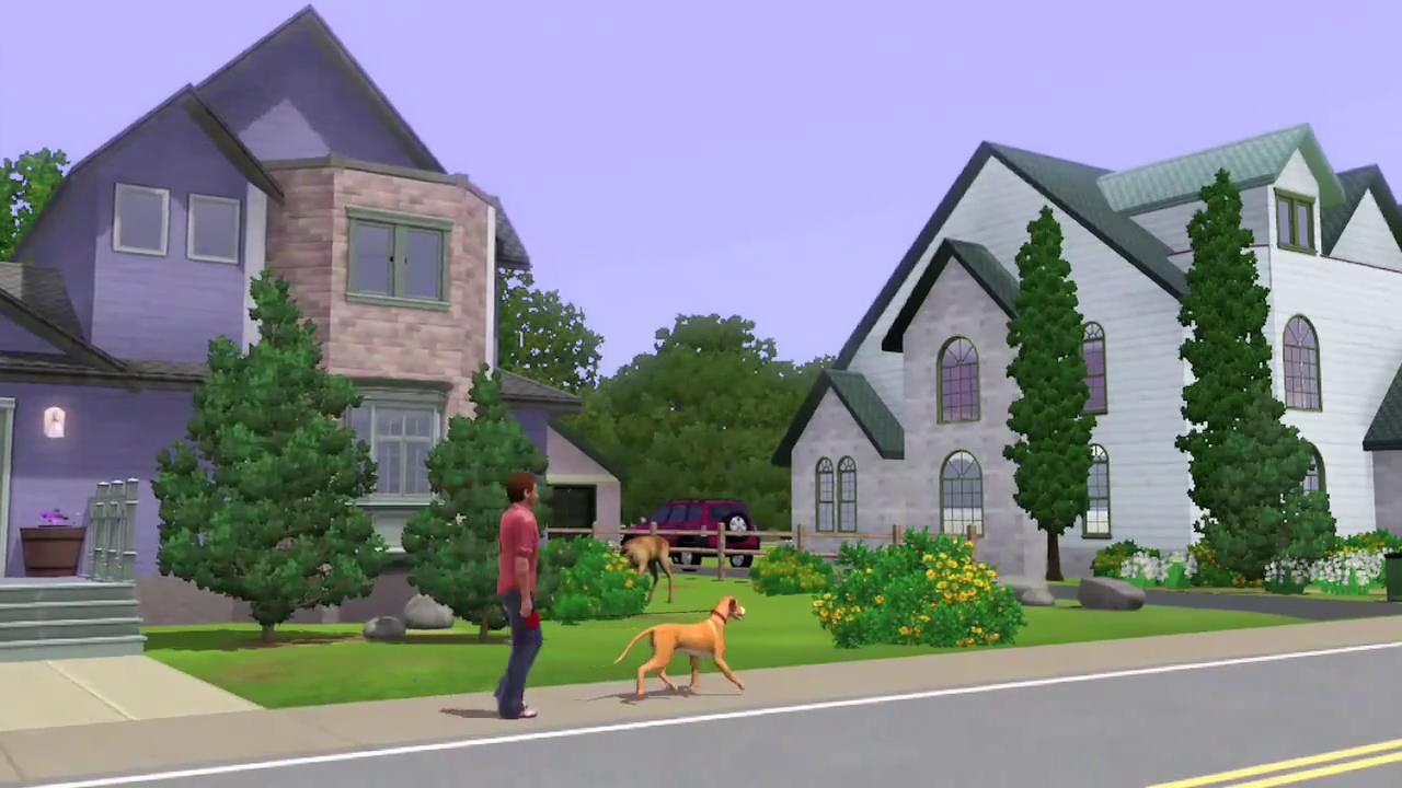 Les Sims™ 3 : Animaux et Cie 318573vlcsnap2011052008h25m51s237