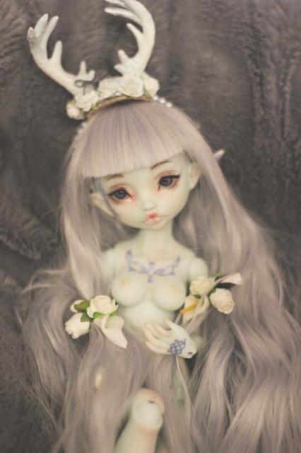 Delirium's Dolls~ Kinokojuice Haine P8 - Page 2 319204IMG3637copie