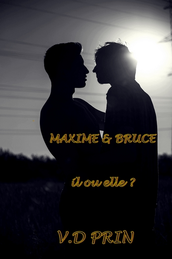 PRIN V.D - MAXIME & BRUCE : Il ou elle ? 319918BRUCEETMAX2