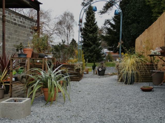 Phyllo - nouveau jardin 324040P3160012