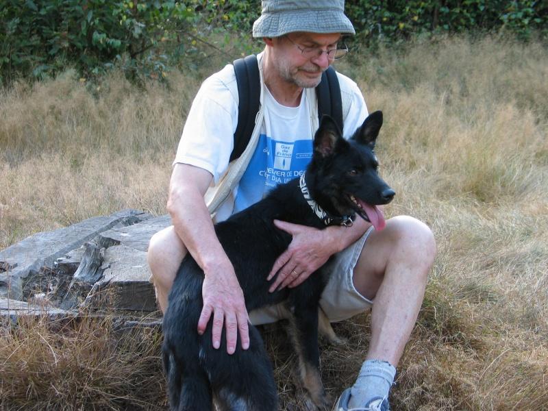 > Mika, un amour de petite chienne, née en mai 2011 - Adoptée 324979IMG0024