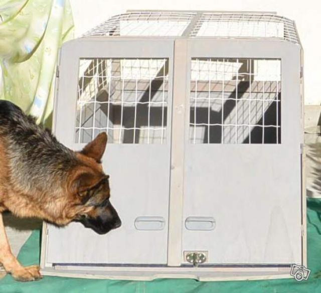 Transport en voiture des chiens et chats - Page 5 328769861416000725565