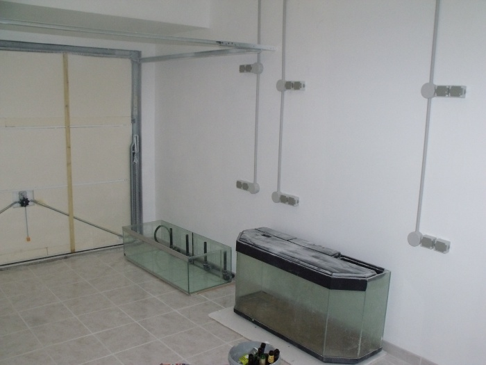 aménagement de ma nouvelle fishroom 336108DSCF4858