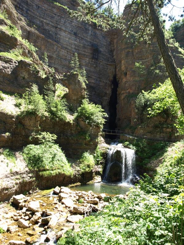 Les Cevennes autour du Mt Aigoual 343831P6238130
