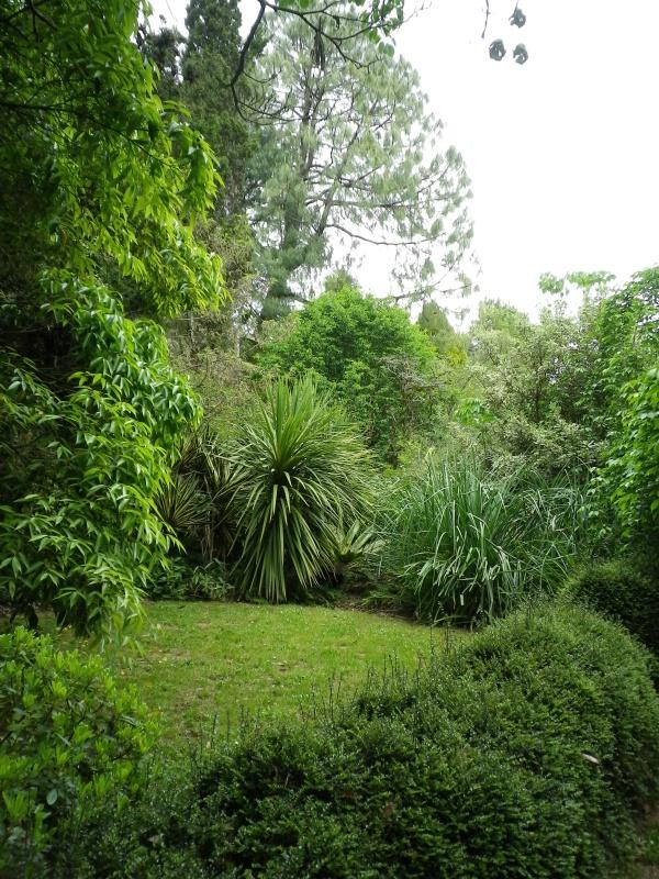 (40) Plantarium et chemin de ronde - Gaujacq - Page 2 347875IMGP4532